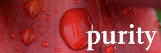 khk_concept_group_purity_en.jpg